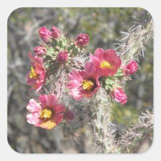 Cholla Cactus Blooms Square Sticker