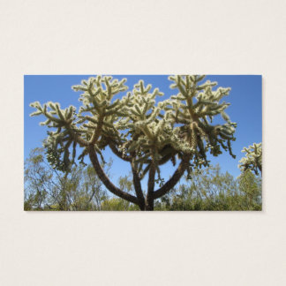 Cholla Cactus Business Card