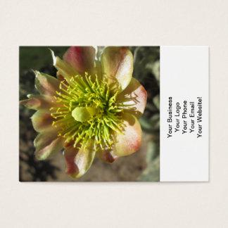 Cholla Desert Flower Bloom Business Card
