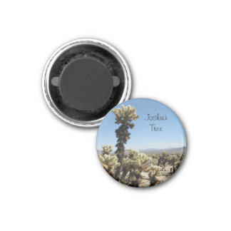 Cholla Garden -Joshua Tree 1 Inch Round Magnet