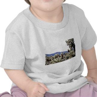 Cholla Garden Tee Shirt