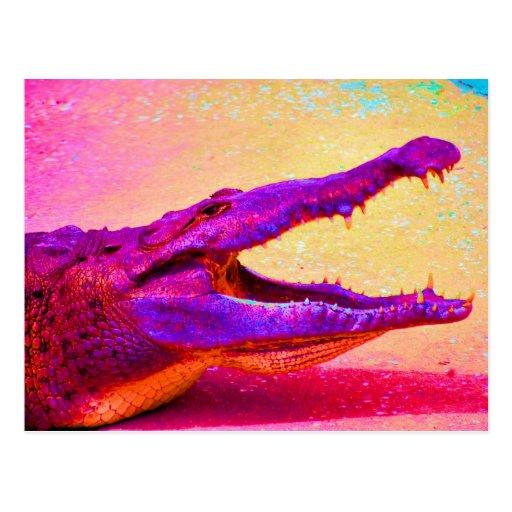 Chomp! Chomp! Rainbow Gator! Postcard