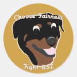 Choose Fairness Classic Round Sticker