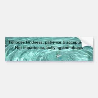 Choose kindness patience acceptance Bumper Sticker