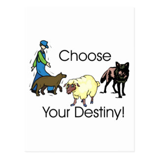 Choose Postcard