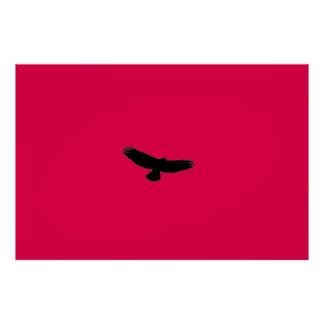 CHOOSE YOUR BACKGROUND COLOR! Black-Red-Tail Hawk Poster