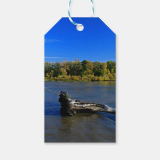 Chords of Peace Gift Tags