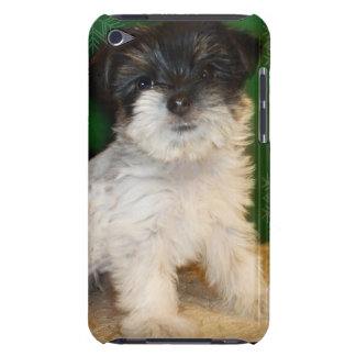 Chorkie puppy barely there iPod case