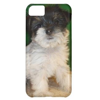 Chorkie puppy iPhone 5C cases