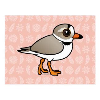 Chorlito aflautado de Birdorable Tarjeta Postal