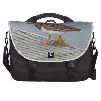 Chorlito en un puerto bolsas para portatil