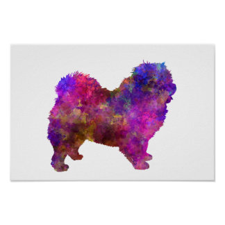 Chow-chow 01 in Watercolor 2 Poster