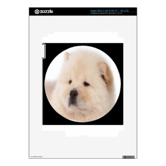 """""""Chow Chow 1"""" iPad 3 Decals"""