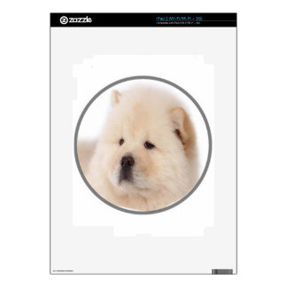 """Chow Chow 2"" iPad 2 Skin"