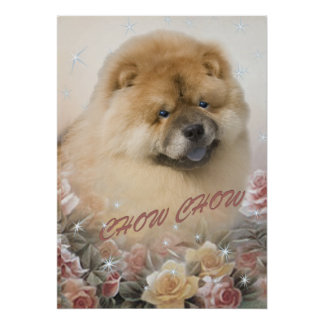 CHOW CHOW among roses print