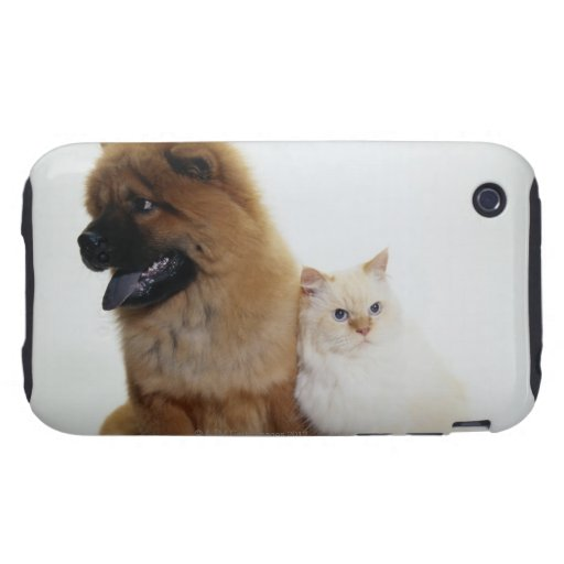 Chow Chow and a White Cat Sitting Together Tough iPhone 3 Covers