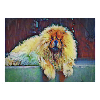 Chow Chow Dog on Porch in the Rain Poster