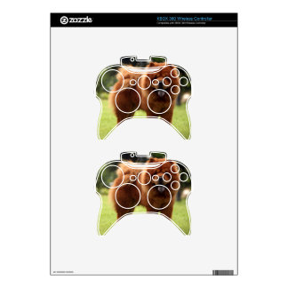 Chow Chow Dog Poses Xbox 360 Controller Skin