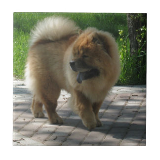 chow chow full ceramic tile
