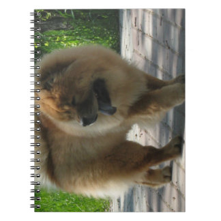 chow chow full.png spiral notebooks