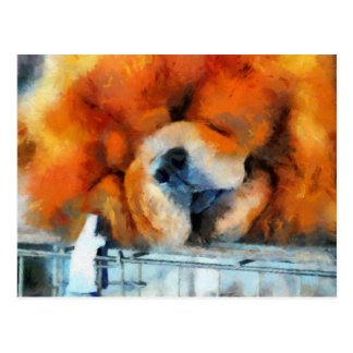 Chow Chow Painting Post Card