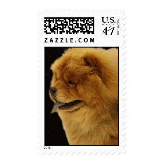 Chow Chow Postage