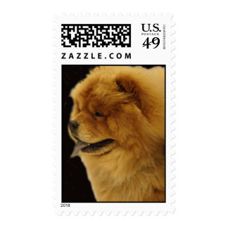 Chow Chow Stamp