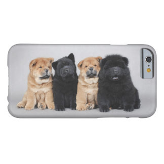 Chow-chow puppies iPhone 6 case
