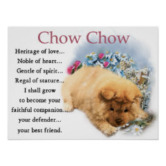 Chow Chow Puppy Art Print print