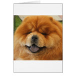 Chow Chow Rescue Card