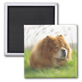 Chow Chow vacation 2 Inch Square Magnet