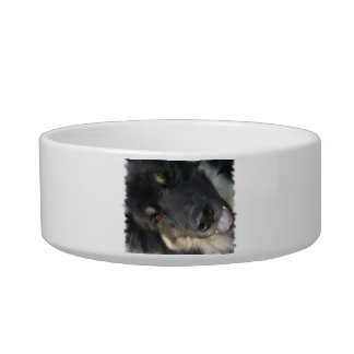 Chow Hound Pet Bowl Cat Water Bowl