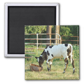 Chow Time 2 Inch Square Magnet