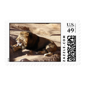 Chow time postage stamp