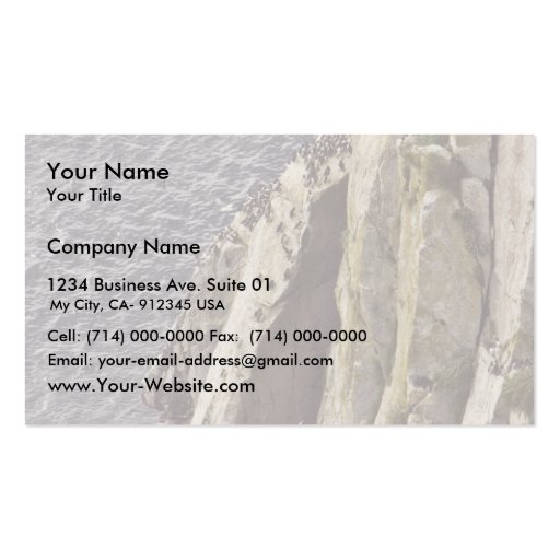 Chowiet Island murre colony Double-Sided Standard Business Cards (Pack Of 100)