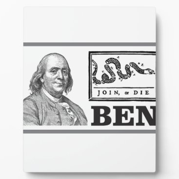 USA Themed chpped snake ben plaque