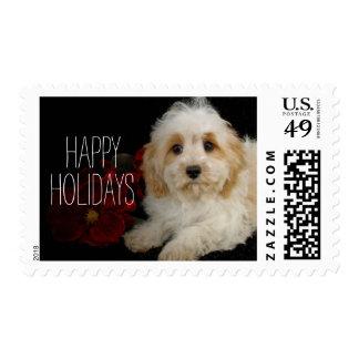 Chrirstmas Cavachon puppy Postage