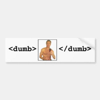 Chris Lee: Dumb Car Bumper Sticker