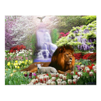 Christ the Lamb of God Postcard