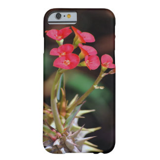 Christ Thorn flower Barely There iPhone 6 Case