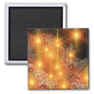 christbaumkugeln-66038.jpg magnet