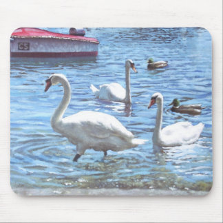 christchurch harbour swans and boats mouse pad