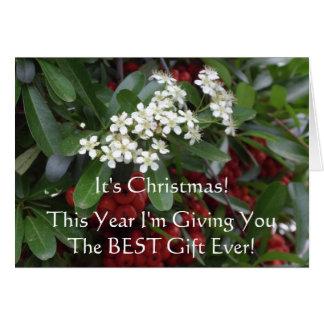 Christian Christmas Card with Gospel message
