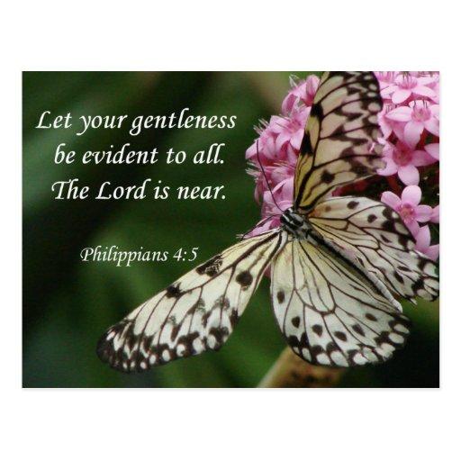 Christian Faith Art ~ Philippians 4:5 Postcard