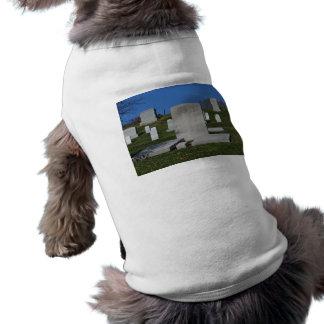 Christian Headstone Arlington Cemetery Dog Clothes