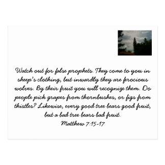 Christian Postcard on False Prophets