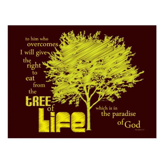Christian postcard: Tree of Life Postcard