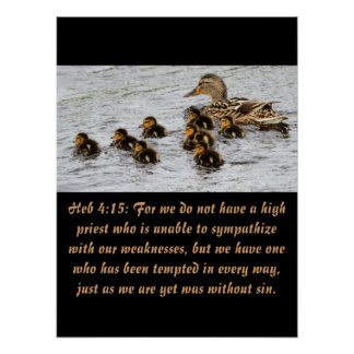 Christianity Scripture Heb 4:15 Poster