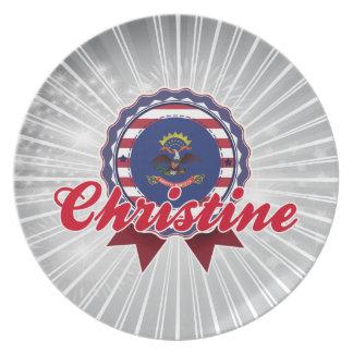 Christine ND Plato De Comida