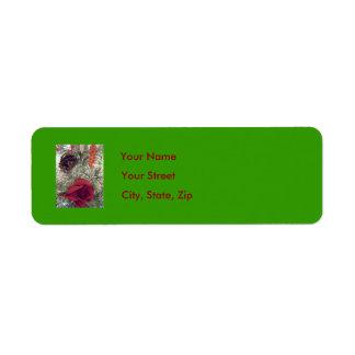 Christmas Address Label Green